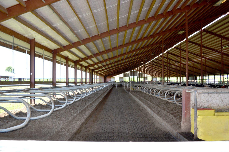 Barta Farms